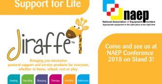 Jiraffe at NAEP Conference 2018